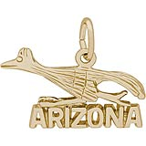 14k Gold Arizona Road Runner Charm by Rembrandt Charms