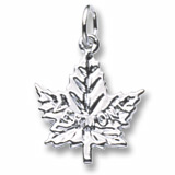 3666 - MAPLE LEAF, VERMONT