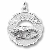 6331 - Bonaire, Iguana