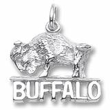 3282 - Buffalo